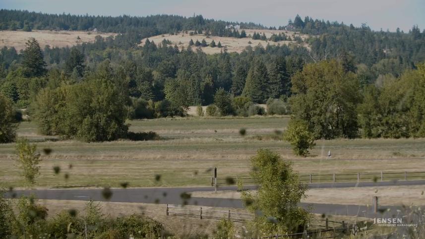 Video still of landscape